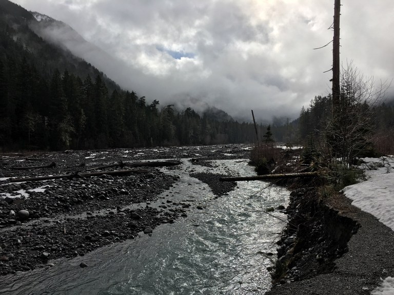 Carbon River to Ipsut Falls by dmbaughman.jpeg