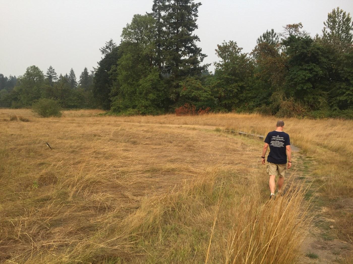 A person walks through a field of golden grass. Photo by BeaverDawg.