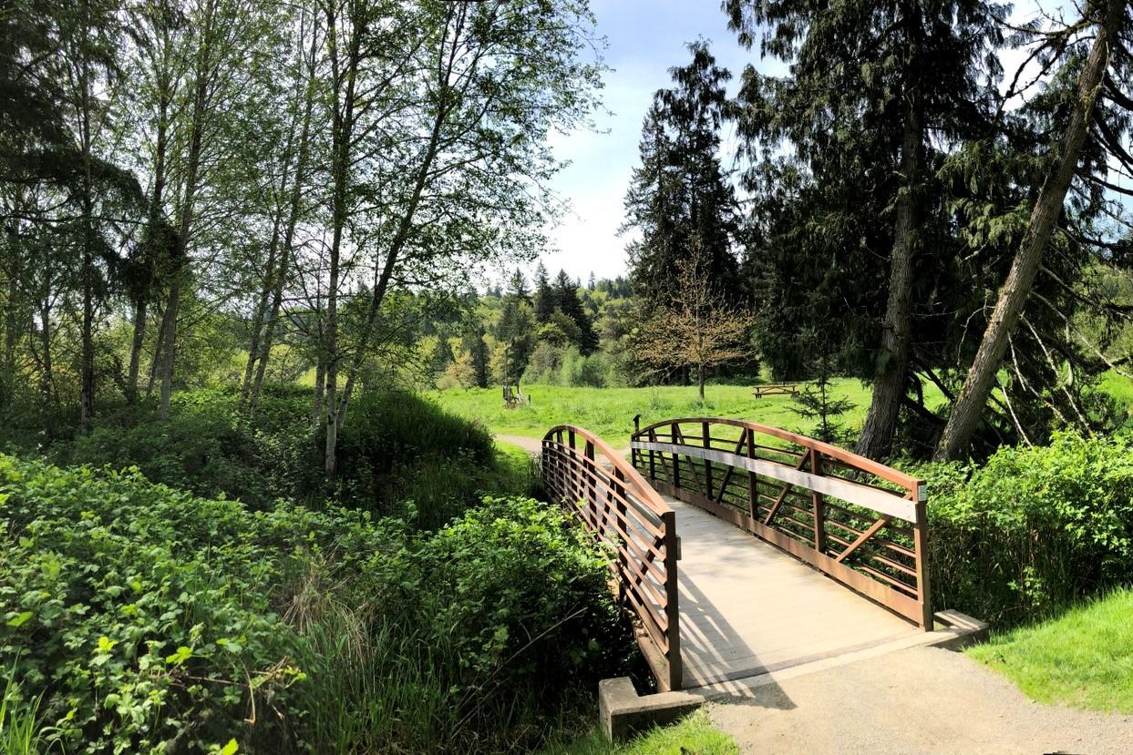 Evans Creek Preserve by kokay.jpeg