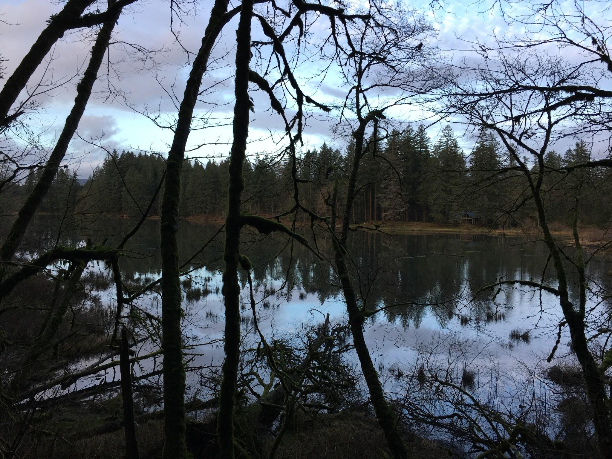 fallen leaf lake_todash19.jpeg