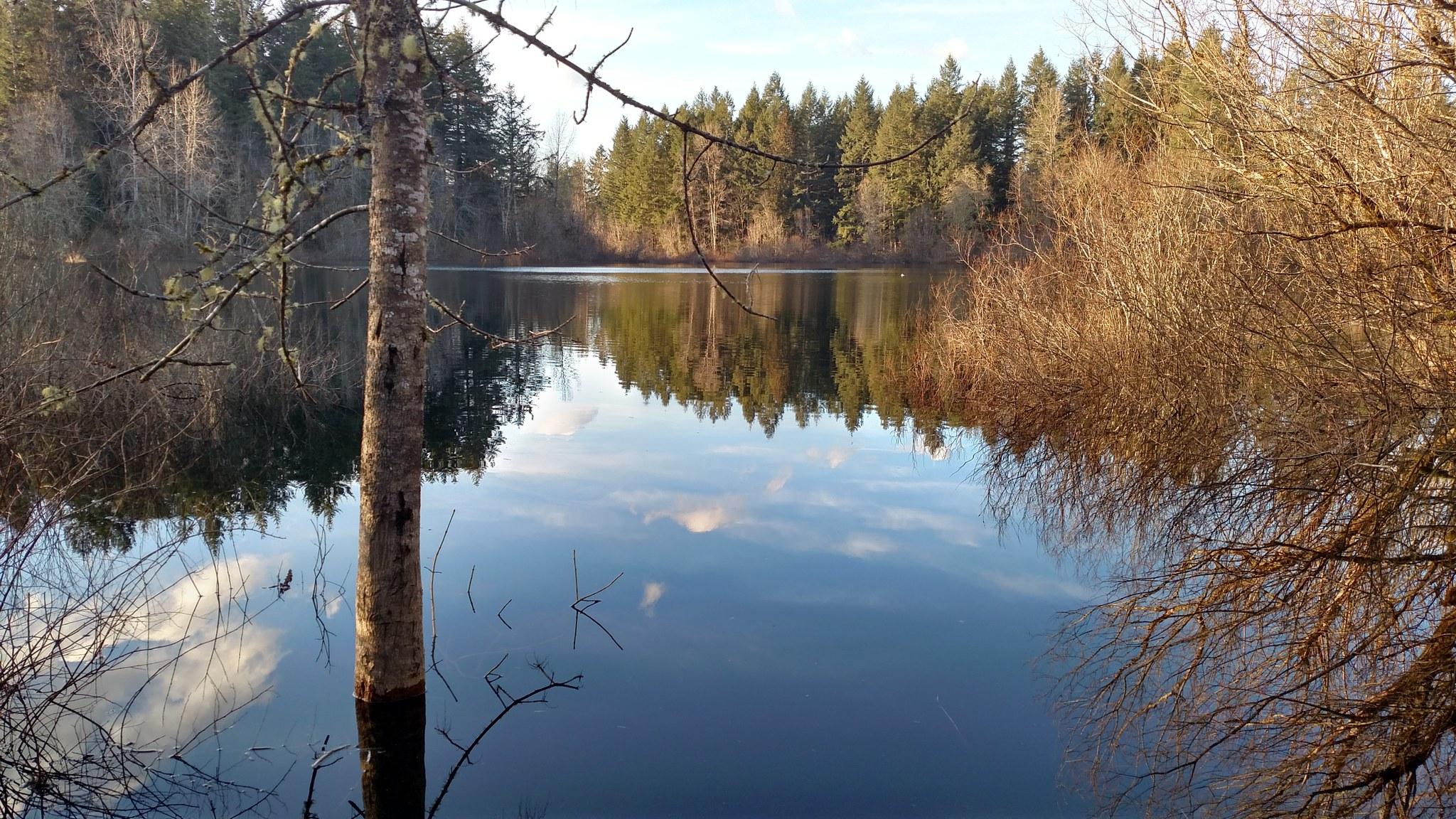 Grass Lake.jpeg