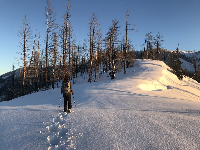 A person snowshoes along a ridge. Photo by hydrastation.