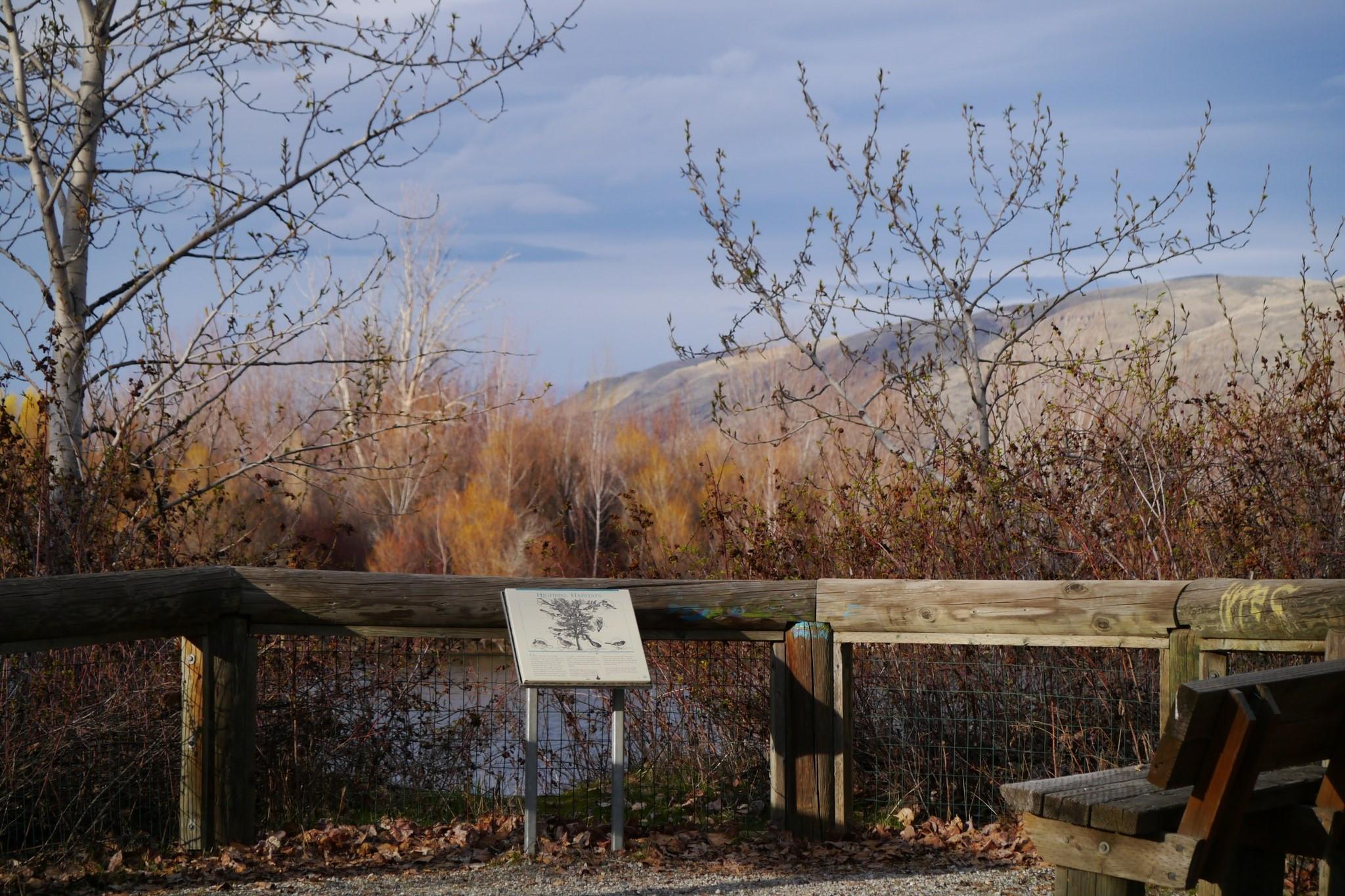 Horan Natural Area. Photo by ThayneT..jpeg