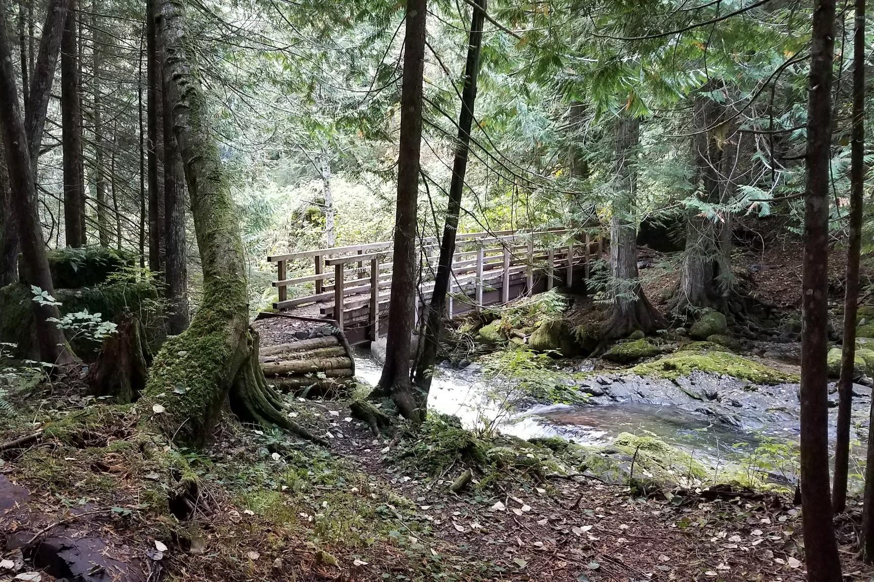 Kelley Creek. Photo by ejain.jpeg