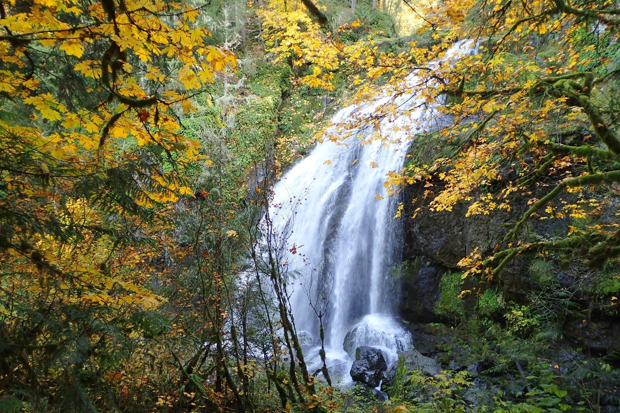 Little Mashel Falls. Photo by Mare..jpeg