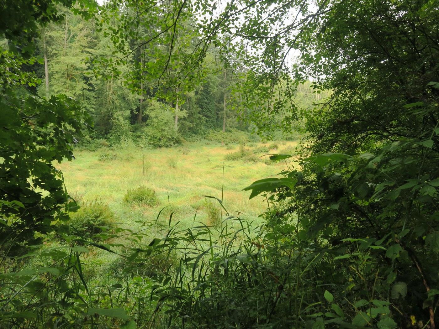 Lord Hill Regional Park. Photo by Muledeer.jpeg