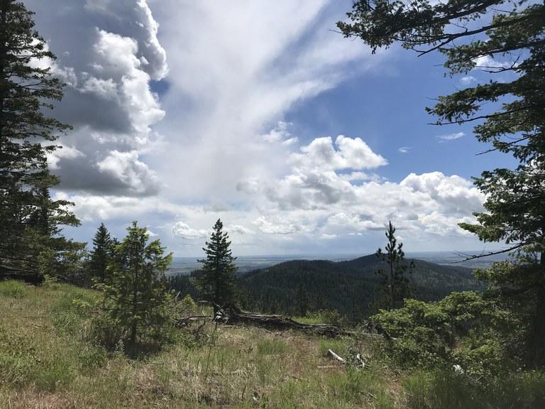 Mica Peak. Photo by TrailKat.