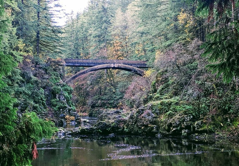 Looking upriver at an elegantly curved arch of an old stone bridge surrounded by a mossy forest.