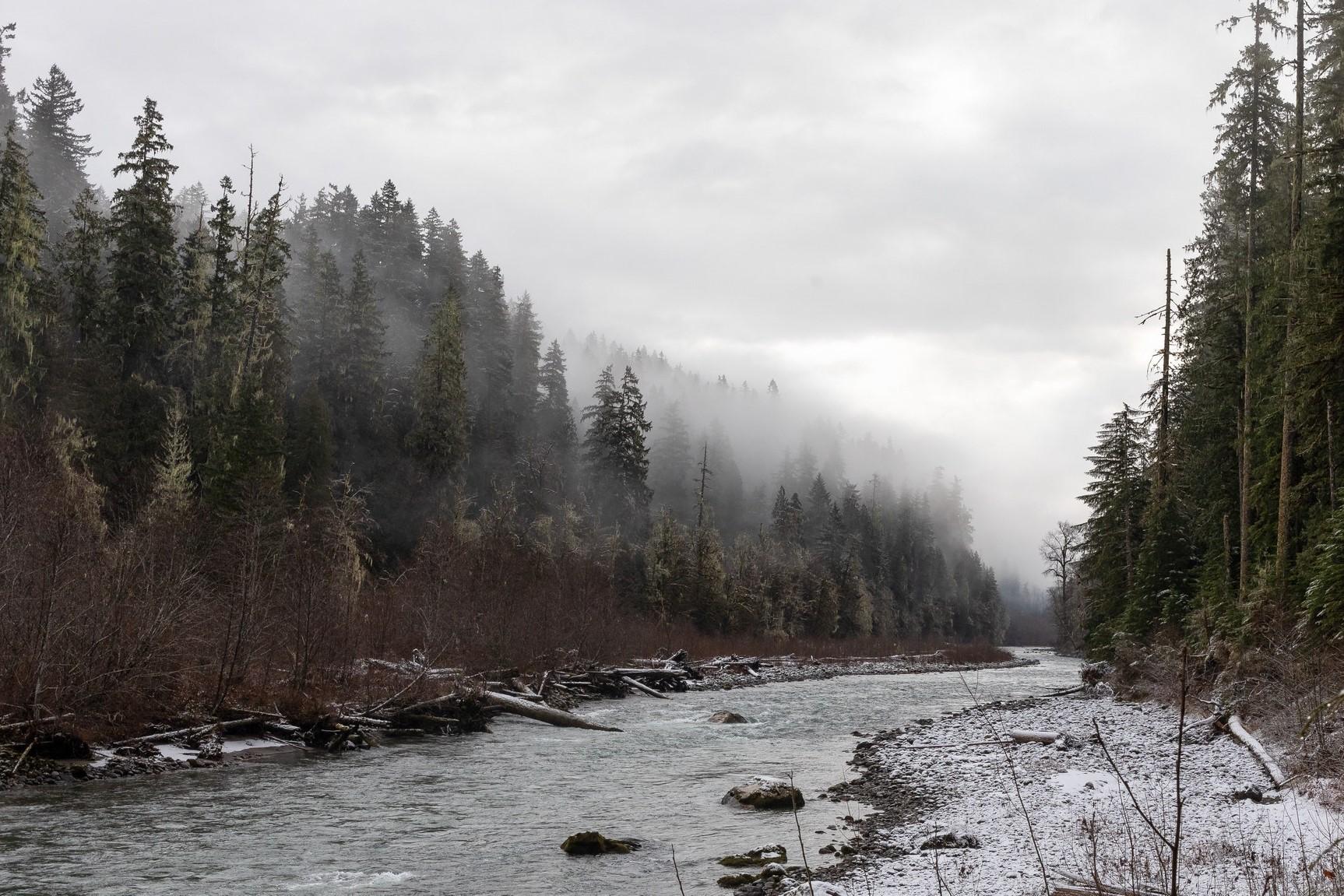 Old Sauk River Trail. Photo by Gabep..jpeg