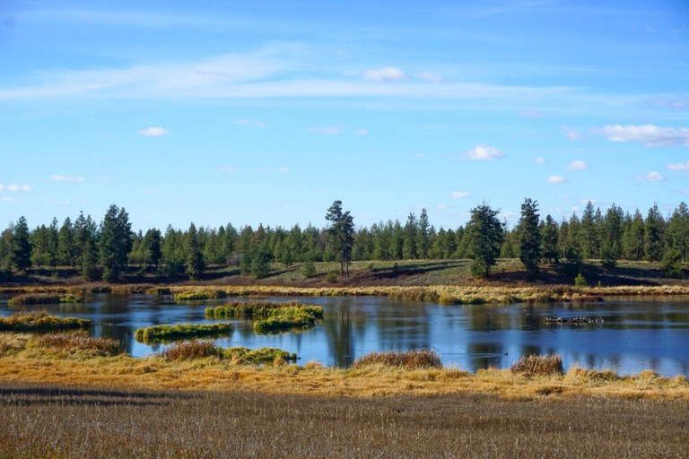 Slavin Pond Loop. Photo by northwestgal99.