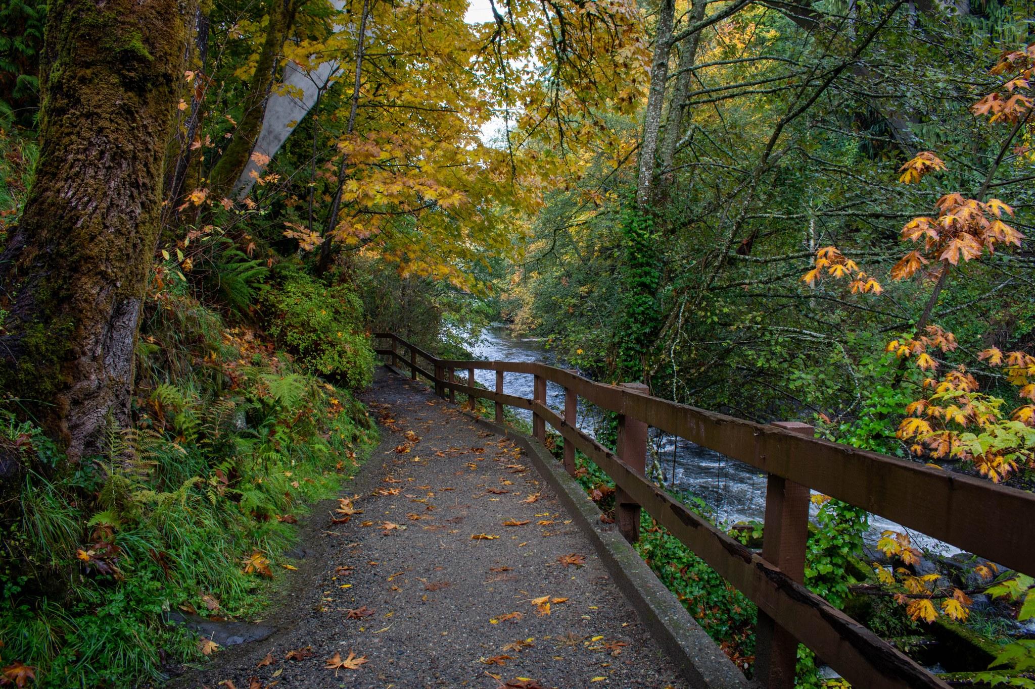 Tumwater Falls Park. Photo by lpick10..jpeg
