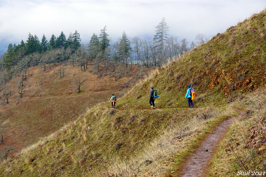 A group of three hikers walk along the trail away from the camera. Their bright clothing stands out against the muted grasses and bare trees surrounding them.