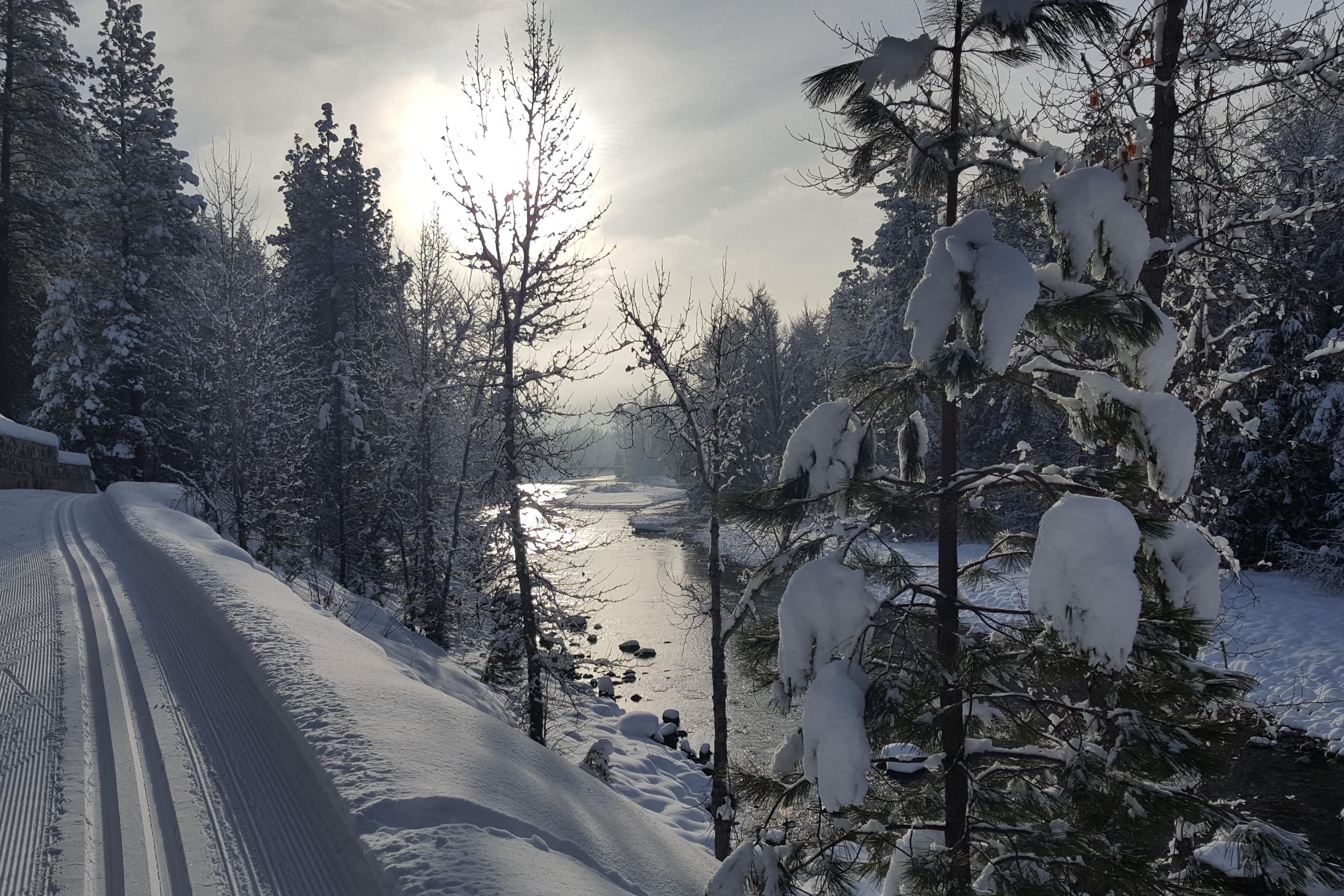 Ski tracks near Winthrop.