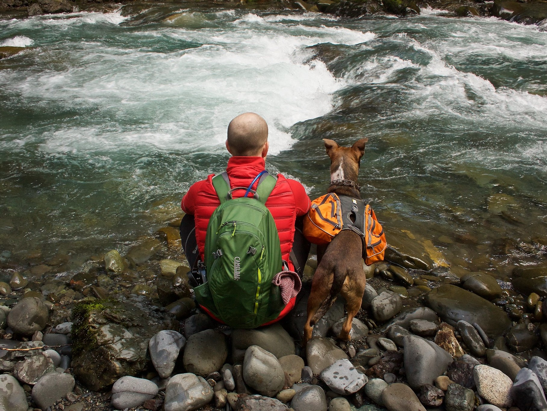 Dog and hiker sitting along a river