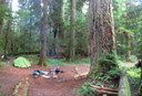 camping near the Lewis River