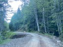Wash out on forest service road