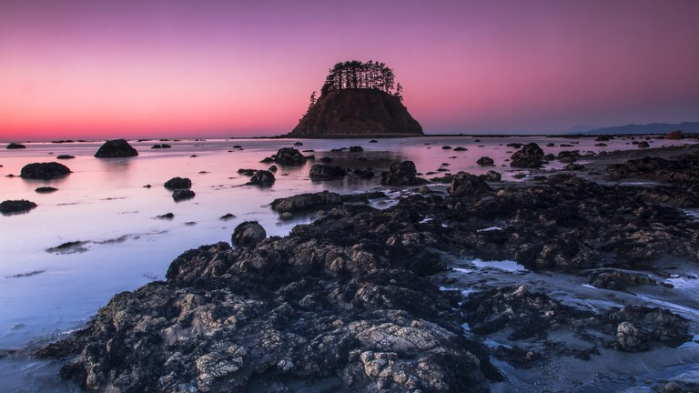 Ozette Triangle, Cape Alava, Olympic National Park. Photo by Xiao Wang.
