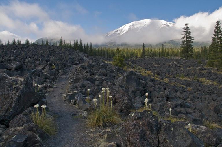 Mount St. Helens. Photo by Stephanie Garbuio.