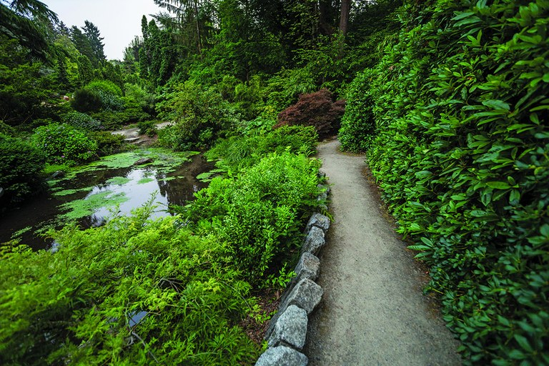 The Trail Next Door: Because Nature Should Always be in Reach — Washington Trails Association