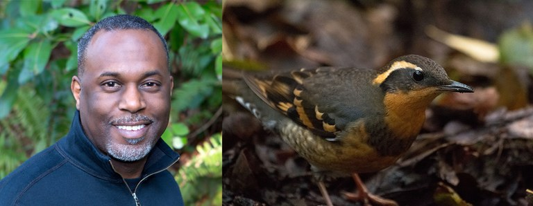 Joey Manson. Photo by Mick Thompson. Varied thrush. Photo by Peter Pearsall/U.S. Fish and Wildlife Service.