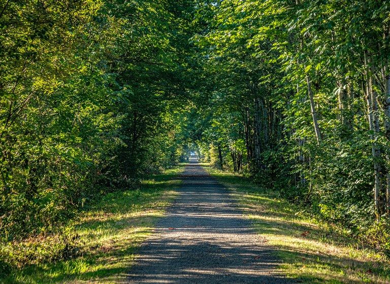 KING COUNTY snoqualmie valley trail.jpg