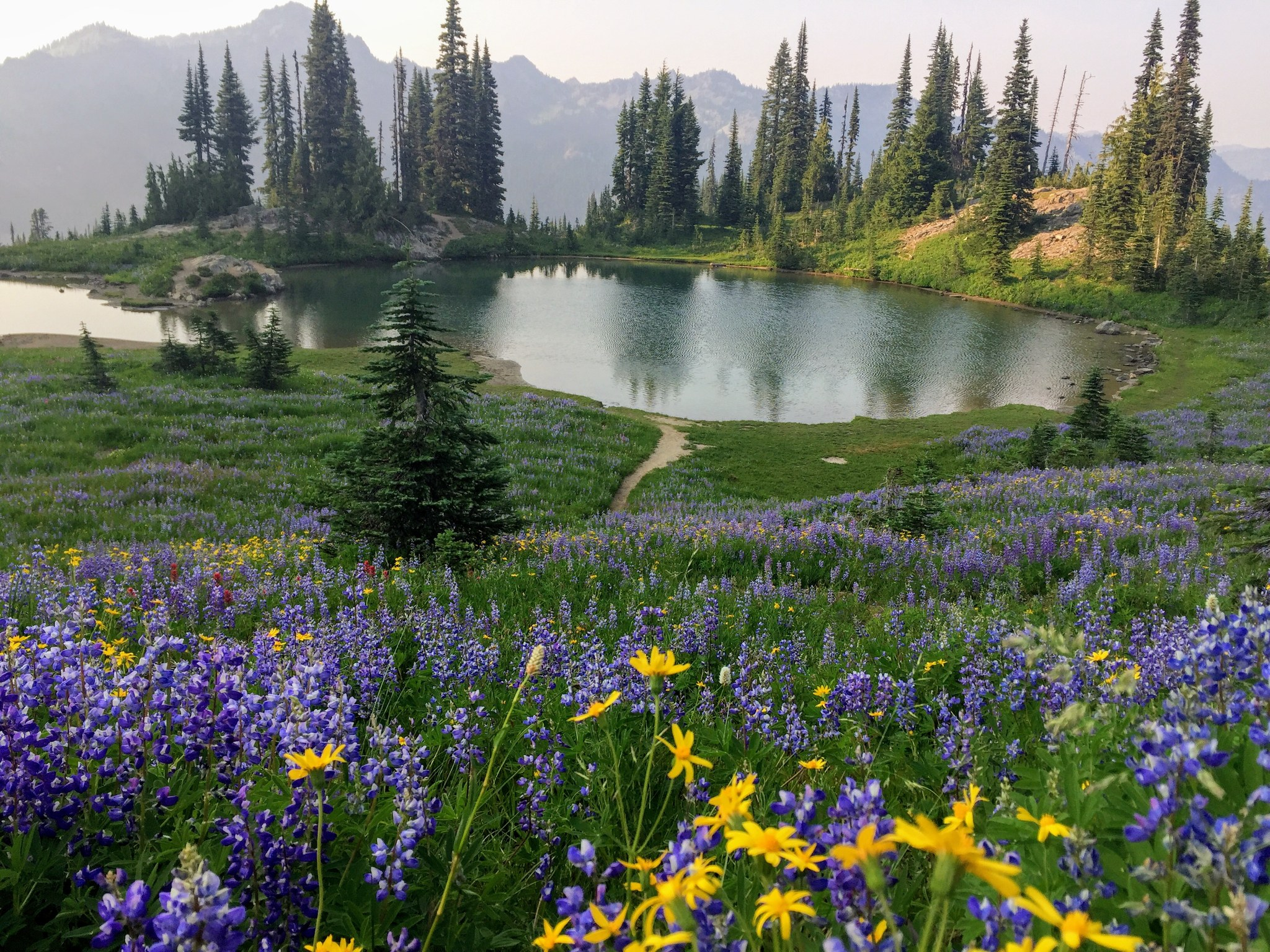 Naches Peak Loop. Photo by Jenny Lamharzi.