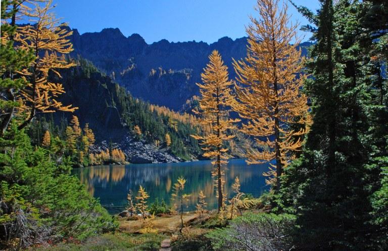 larch lake Judy West.jpg