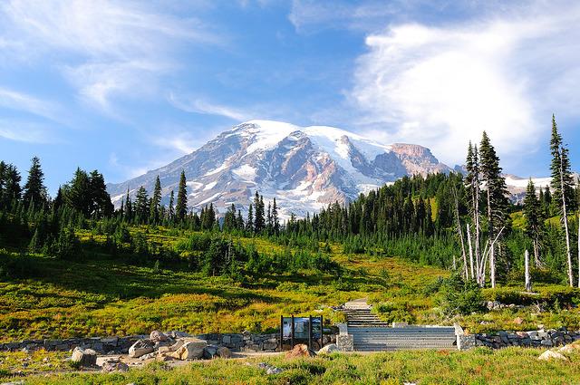 Paradise at Mount Rainier by Vineesh Devasia