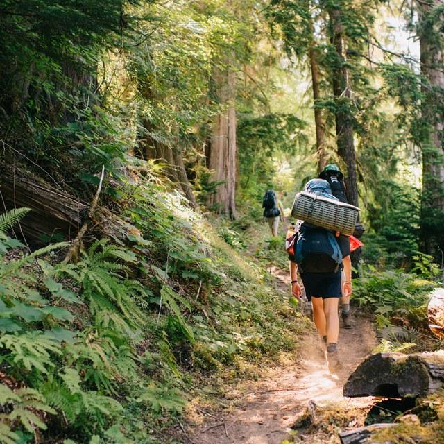 PCT Skyline Volunteer Vacation Hiking