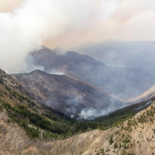Wolverine Creek Fire