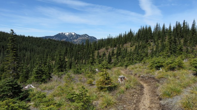 A PCT View south of Snoqualmie Pass