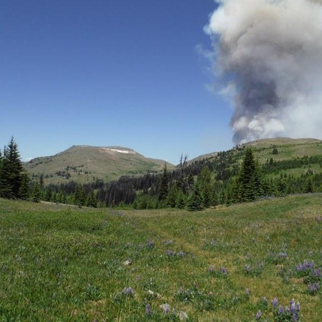 Smoke plume at Sunny Pass