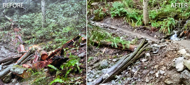 Blanchard Mountain Before and After 2015