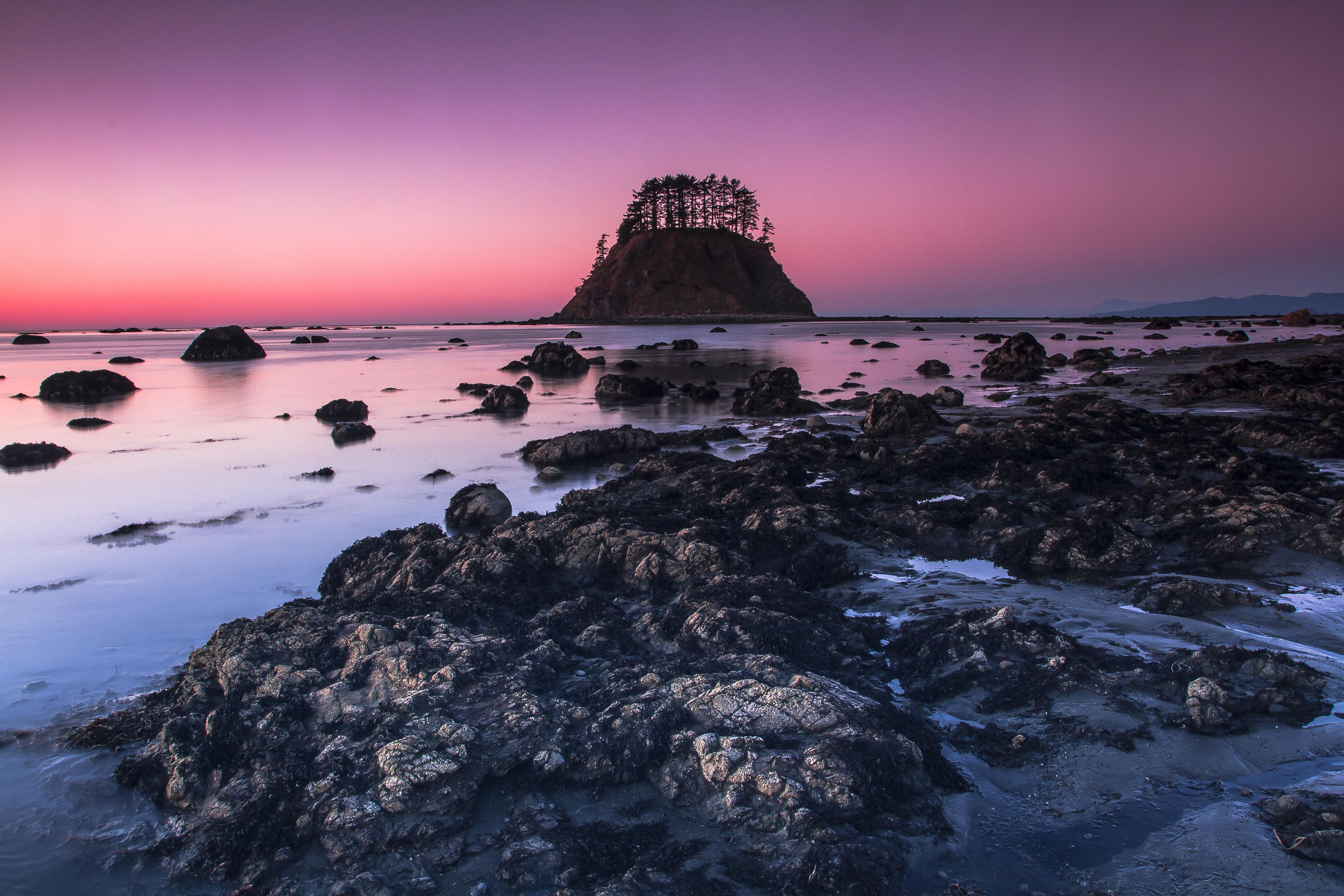 Cape Alava Photo by Xiao Wang..jpg