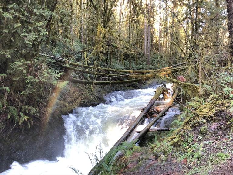 Porter Creek Falls with a small rainbow. Photo by Godziraaa.