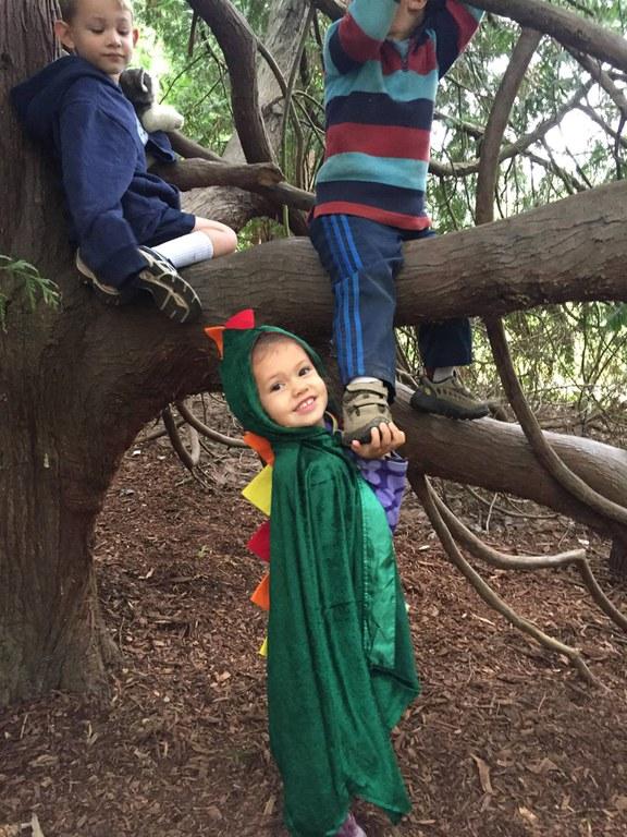 climbing trees at tiny trees.jpg