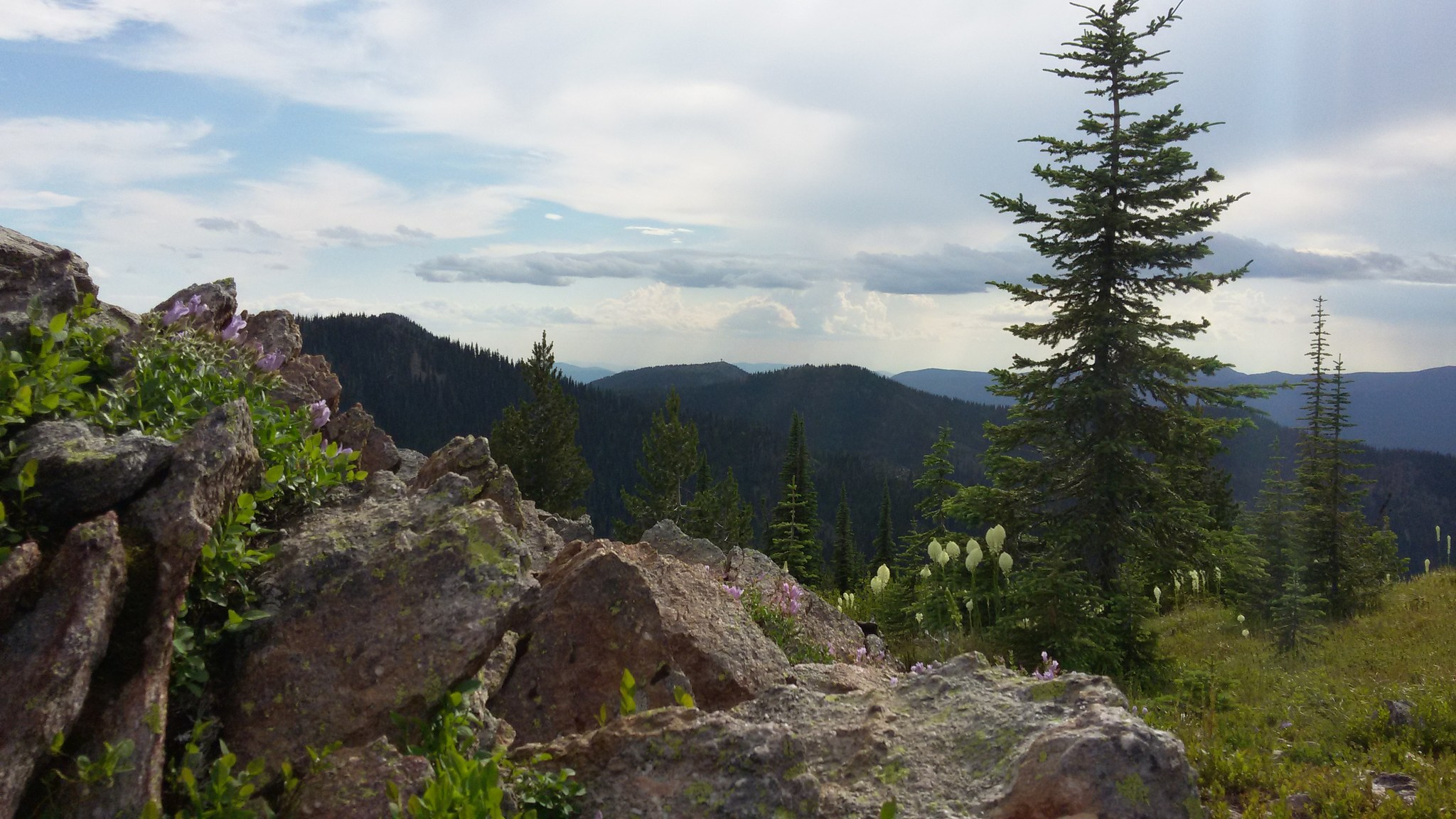 Crowell Ridge by Anna Roth.jpeg