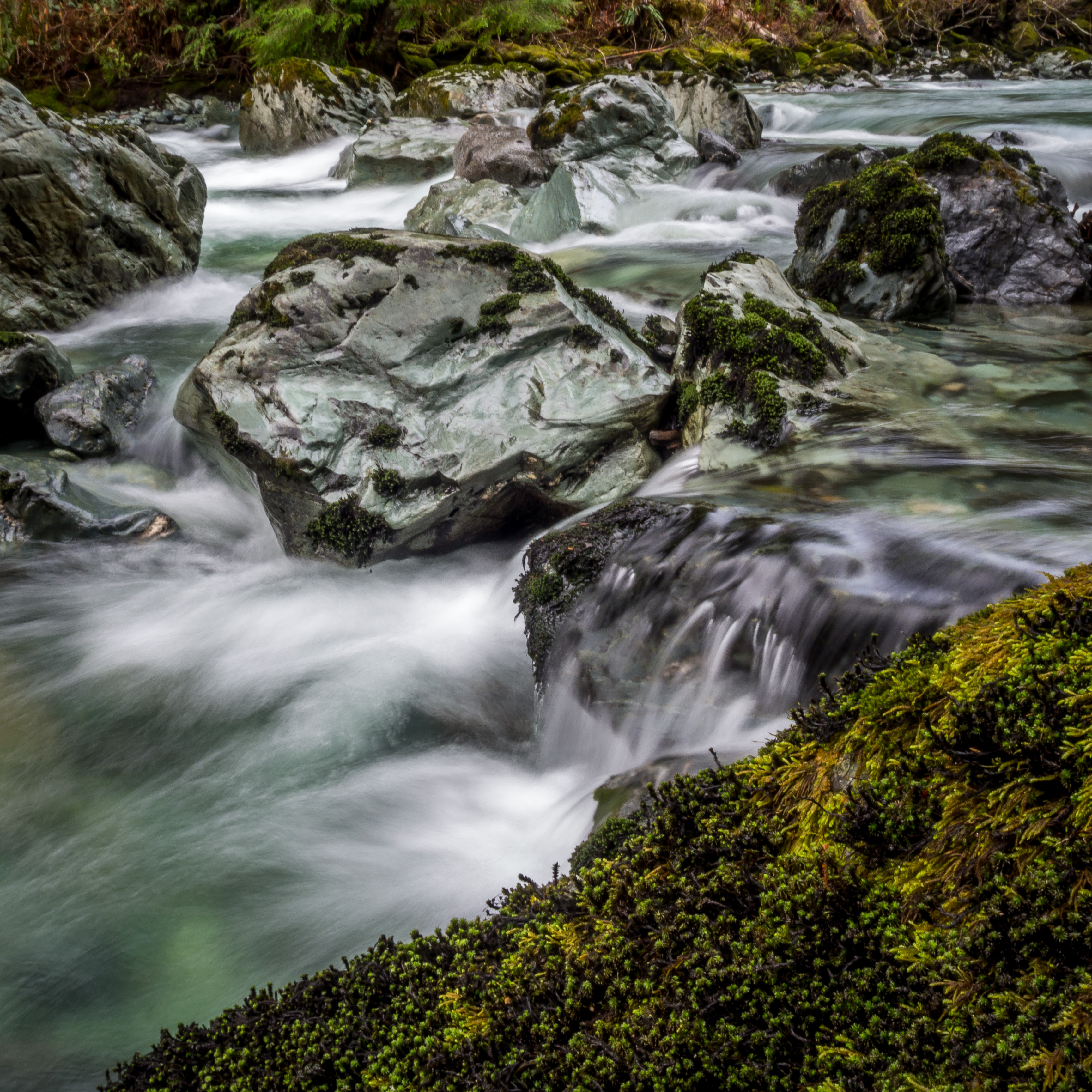 Diobsud Creek.jpg