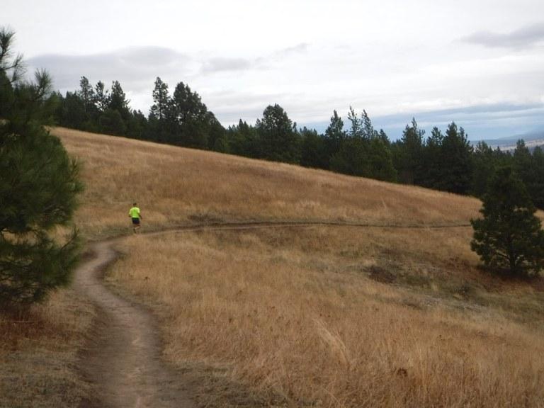 A jogger runs along the trail at Dishman Hills