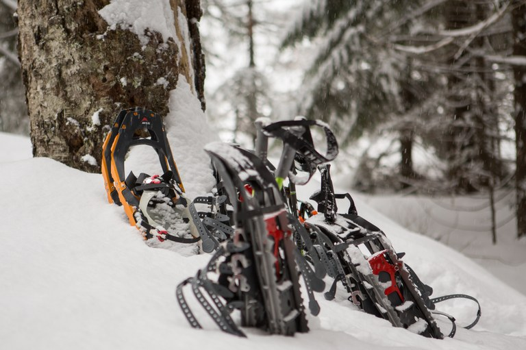 Gear Library Snowshoes by Emma Cassidy