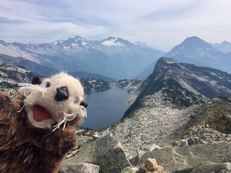 hikingotter Hidden Lake Lookout mountain view stoke.jpeg