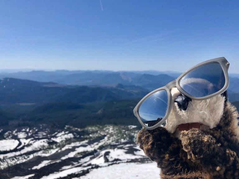 hikingotter Mount St. Helens.jpeg