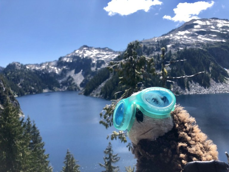 hikingotter West Forks Foss.jpeg