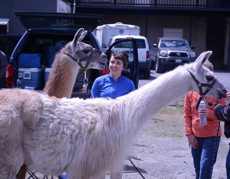 julia-and-a-llama_anna-roth.jpg