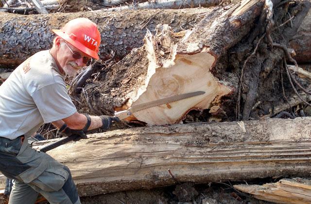 ken vandver sawing mcbride