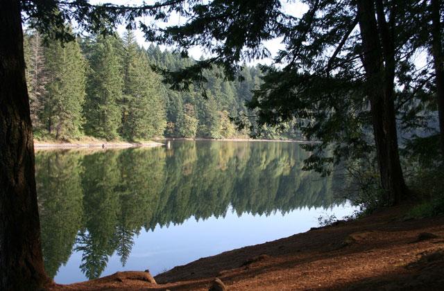 Lacamas Park Round Lake Katrena Gesler