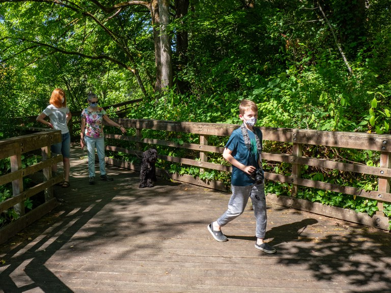Children walk on boardwalk with trees on either side.