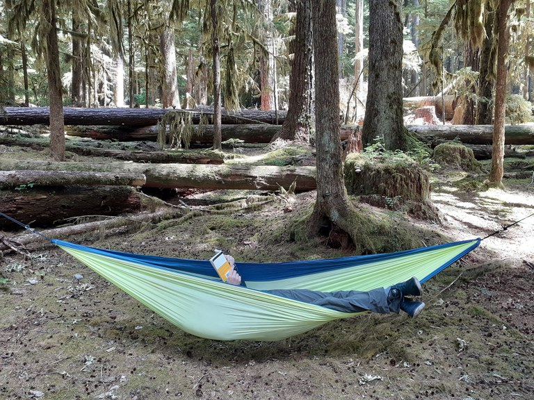 A hiker lays in a hammock reading a book.