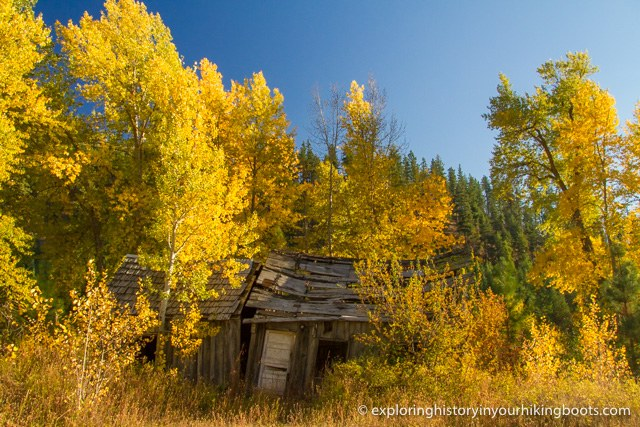 A falling down building amid brightly colored fall leaves.