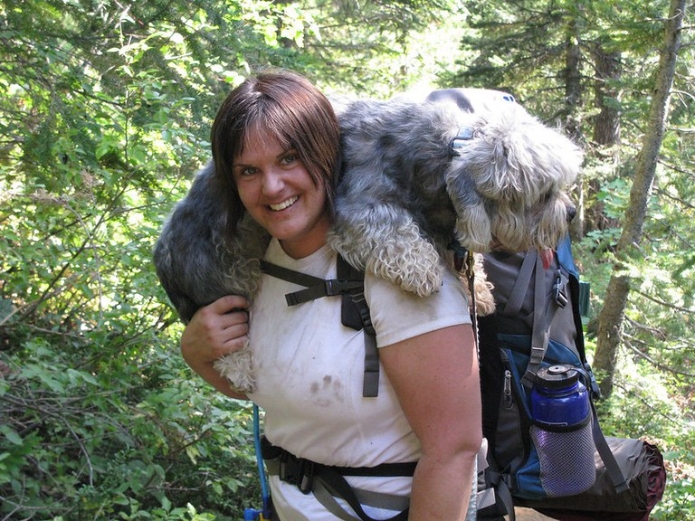 A tired dog is draped around the neck of a smiling hiker.